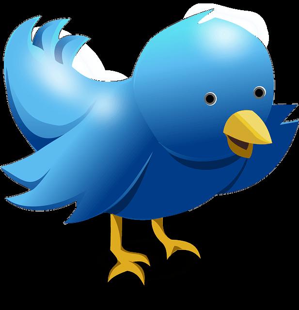 Twittern richtig machen und profitieren!