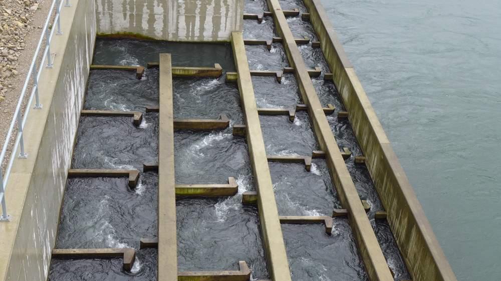Spezielle Fischaufstiegsbecken ermöglichen den Fischen, stromaufwärts am Wasserkraftwerk vorbeizukommen. So erreichen unter anderem Lachse ihre Laichgebiete.