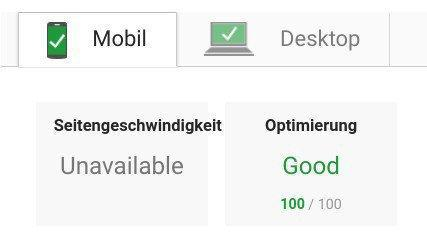 Screenshot Google Page Speed Test with result 100 out of 100 points
